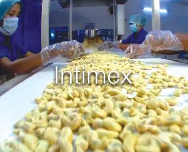 Intimex Vietnam